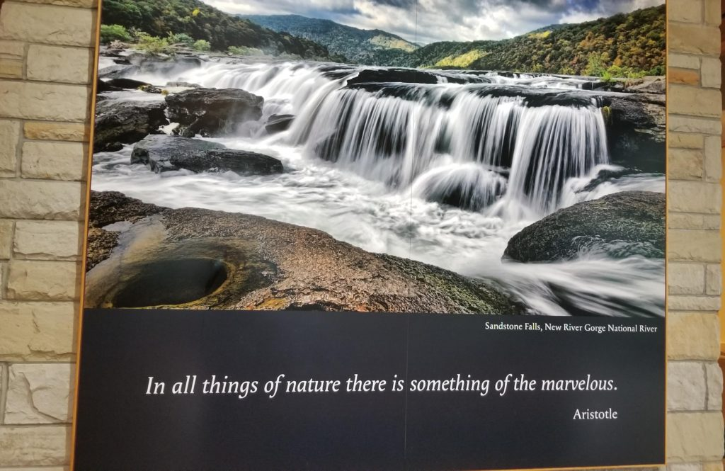 Quote from the State Park