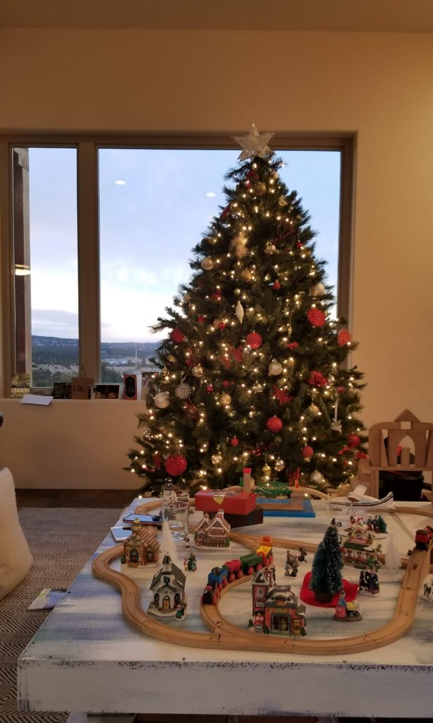 Christmas tree in front of a view window