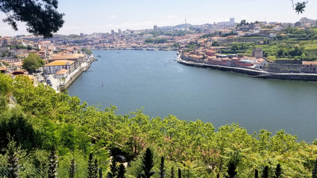 View of the Porto river from up high