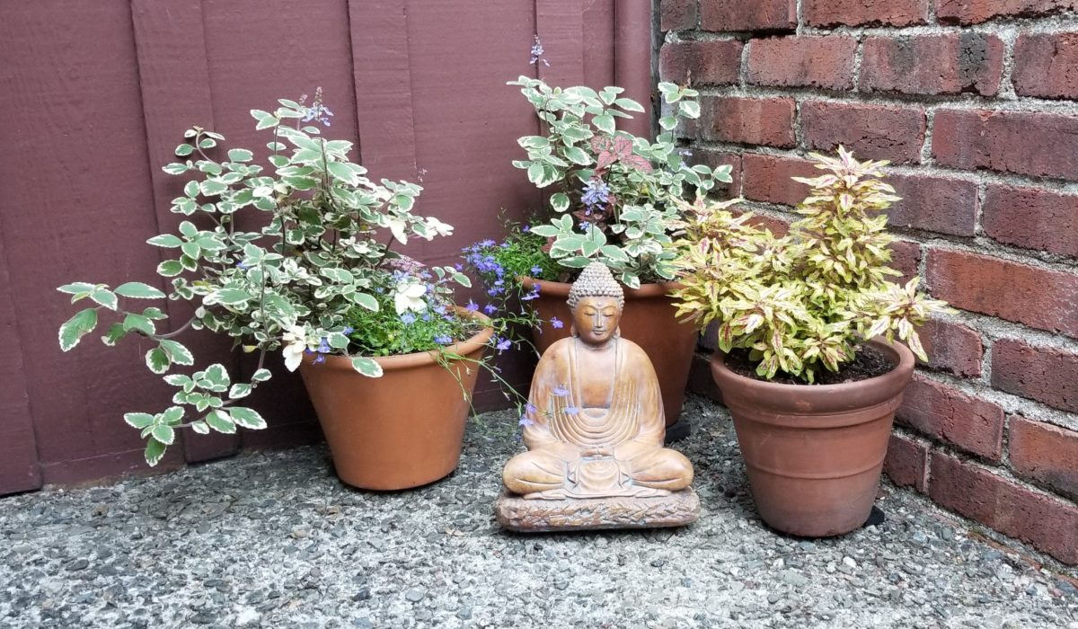 Buddha statue surrounded by 3 potted plants.