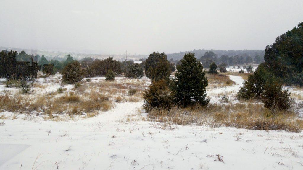 snow storm Edgewood